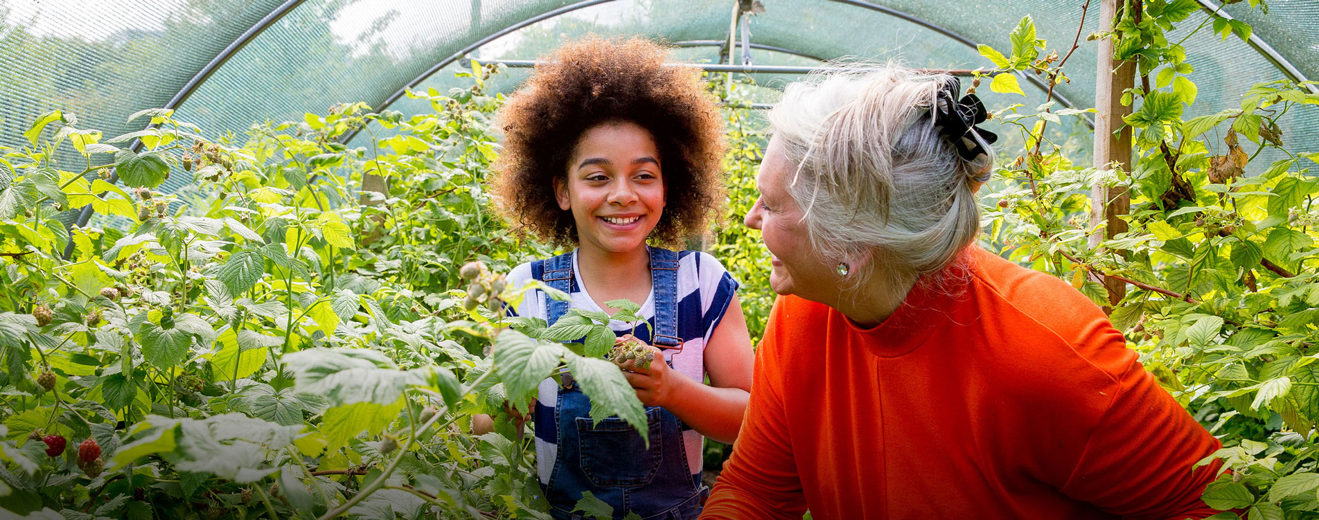Grandmother and granddaughter working in community greenhouse